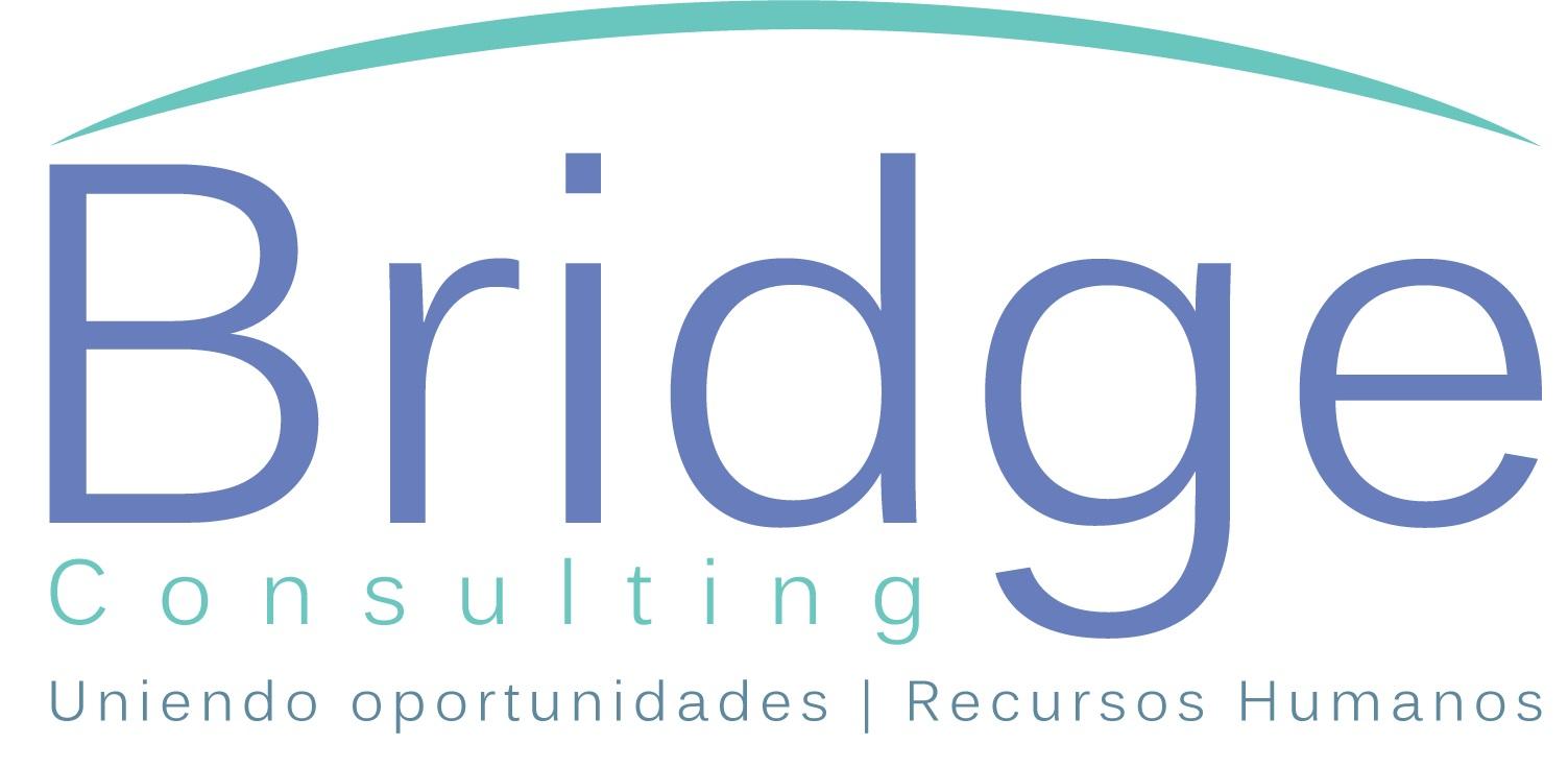 Bridge Consulting