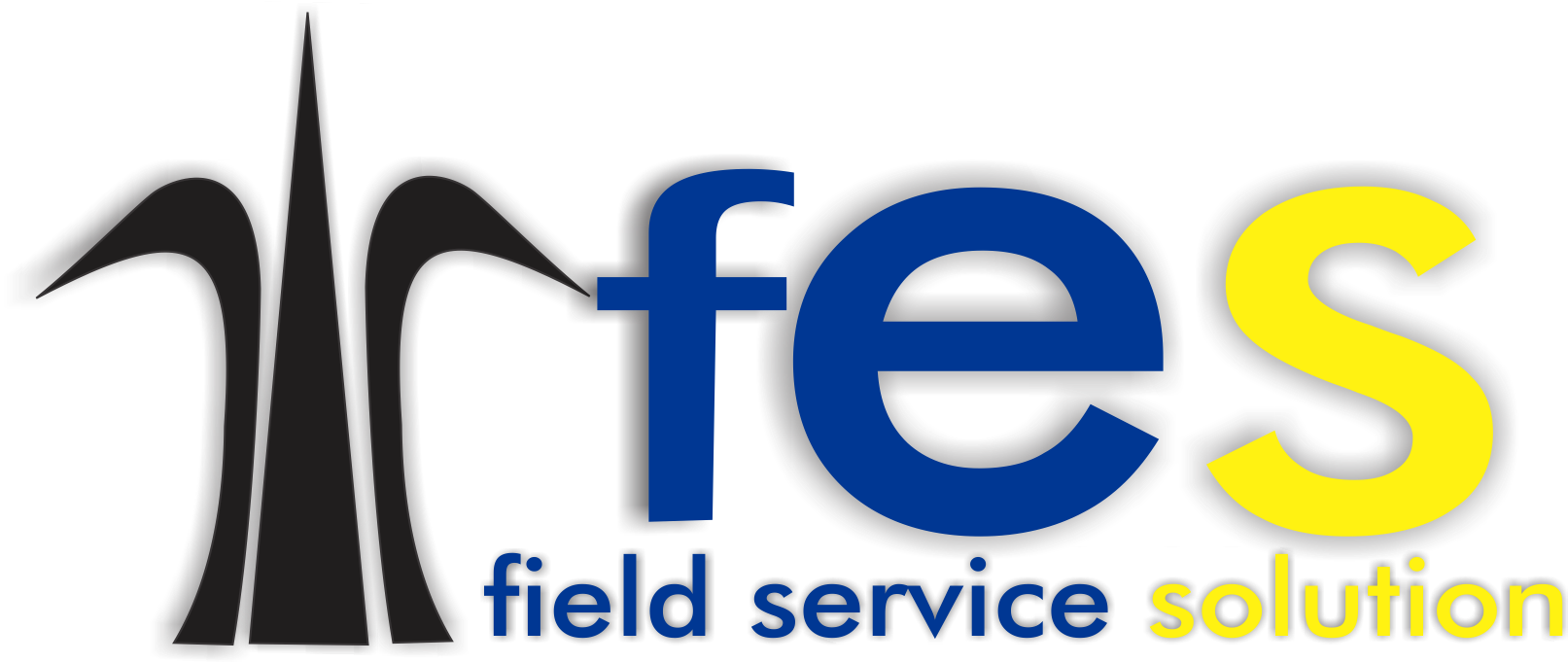 FIELD SERVICE SOLUTION SAS