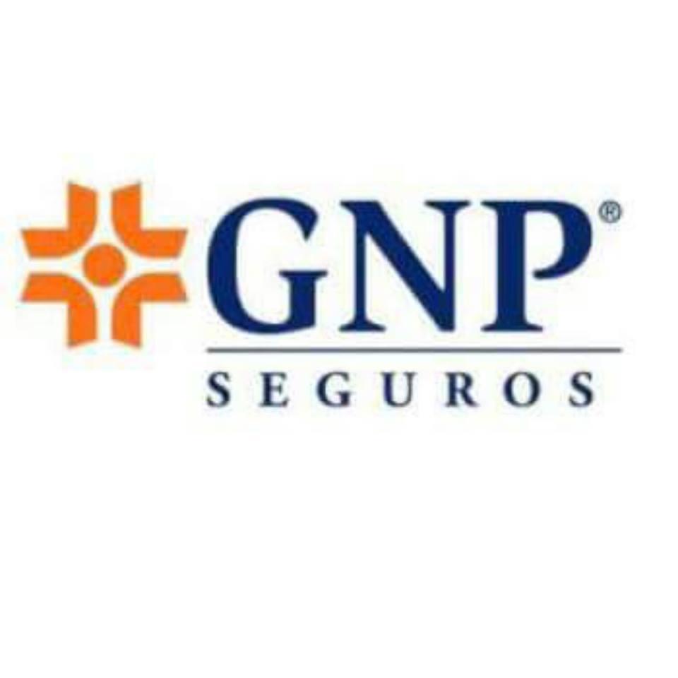 Grupo Nacional Provincial