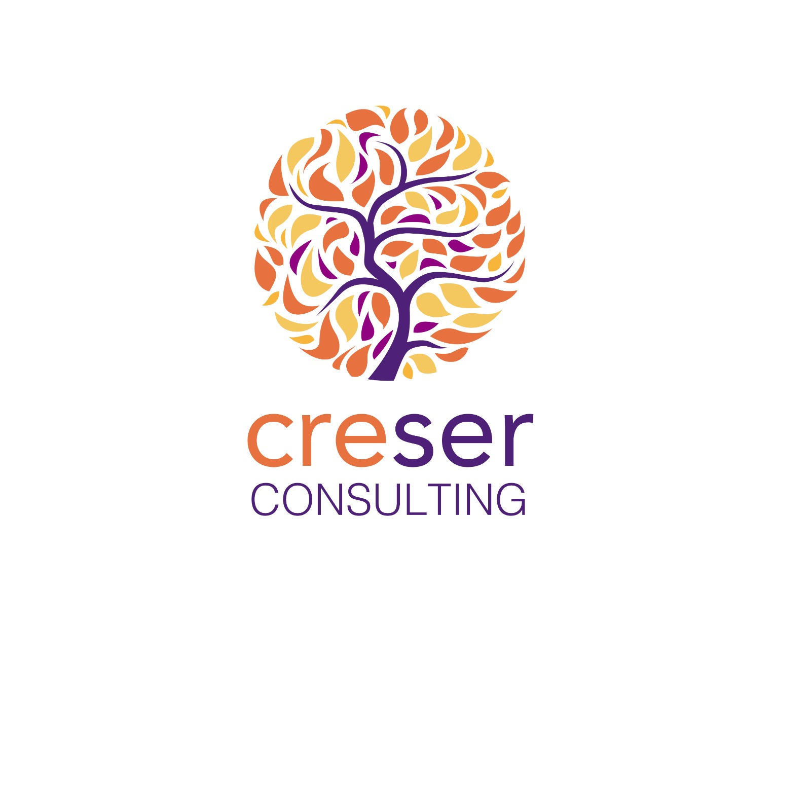 Creser Consulting SAC