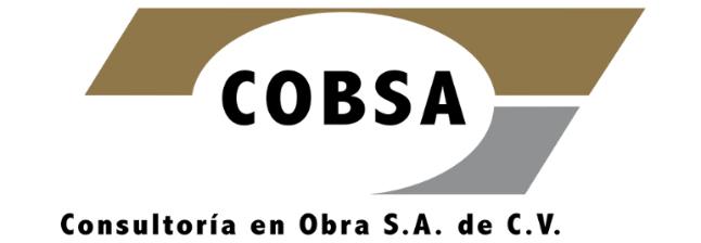 CONSULTORIA EN OBRA SA DE CV